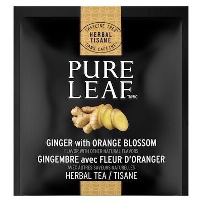 Pure Leafᴹᶜ Thé Chaud Gingembre avec Fleur d'Oranger 6 x 20 sachets - Du vrai thé, de vrais ingrédients, de vraies saveurs
